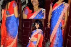 Ethnic Customize Saree